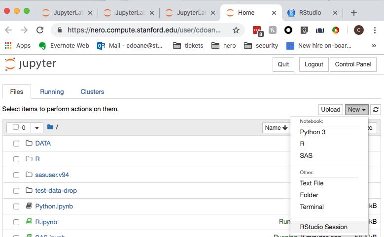 Jupyter Lab accessing RStudio | Nero User Documentation